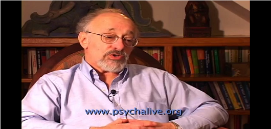 Attachment trauma and the effects of neglect & abuse on the brain:Dr. Allan Schore