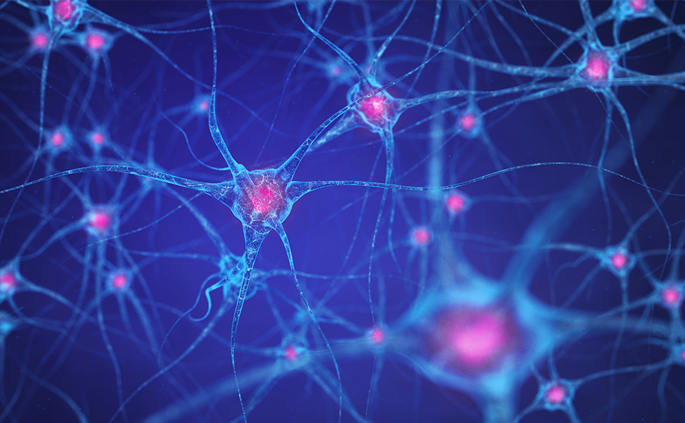 No evident disease activity (NEDA) may become the new standard for disease control in multiple sclerosis