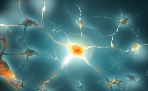 Sphingosine-1-phosphate Receptor Modulators in Multiple Sclerosis