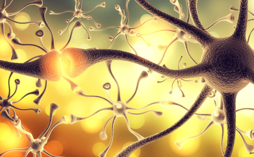 Myasthenia Gravis – A Review of Current Therapeutic Options