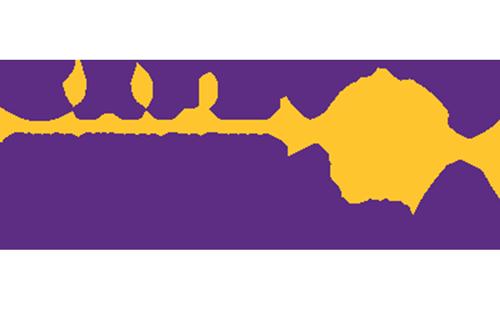 Stroke Alliance for Europe (SAFE)