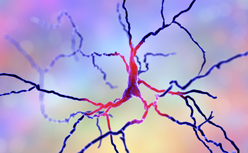 Optimising Dopamine Treatment Strategies in Progressive Parkinson's Disease